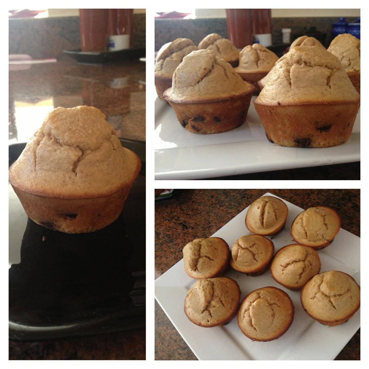 pb choc muffin